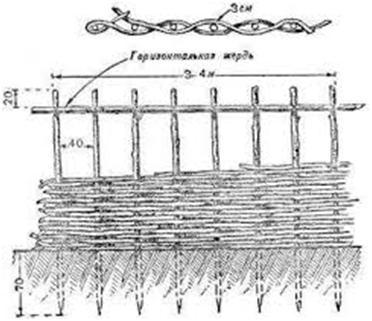 Складывание лозы забора-плетня
