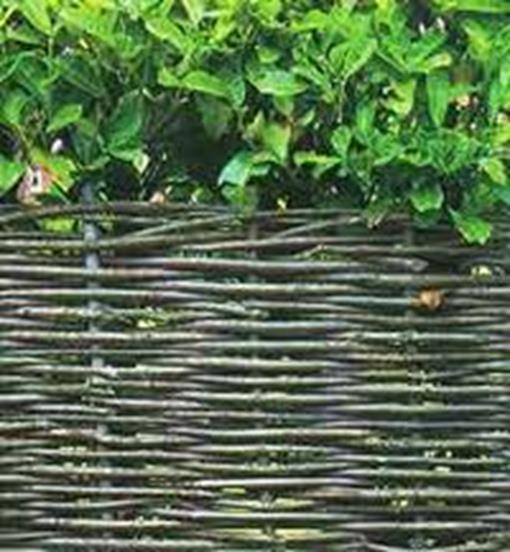 Очень красивый плетенный забор