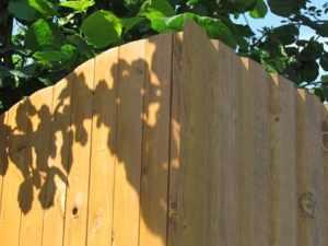 Забор из проф настила имеет эстетический вид и может быть разных цветов