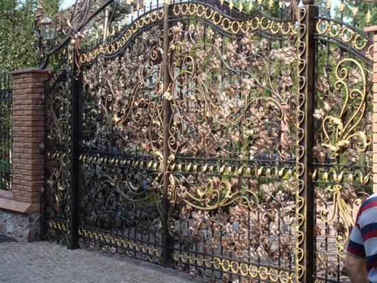 Изысканный металлический портал